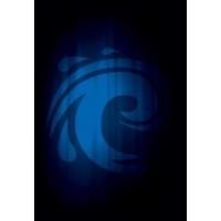 Протекторы Legion - Water матовые (50 шт.)
